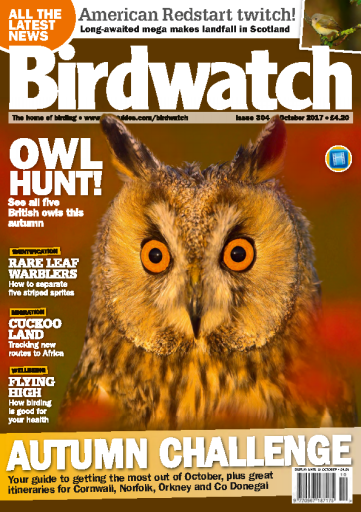 Birdwatch UK October 2017