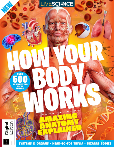 How Your Body Works - First Edition 2019