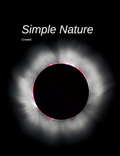 Simple Nature - Light and Matter