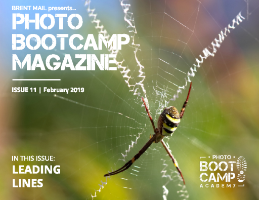 Photo_BootCamp_Magazine_-_February_2019