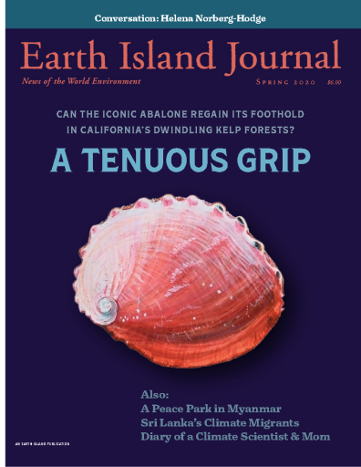 Earth_Island_Journal_-_Spring_2020