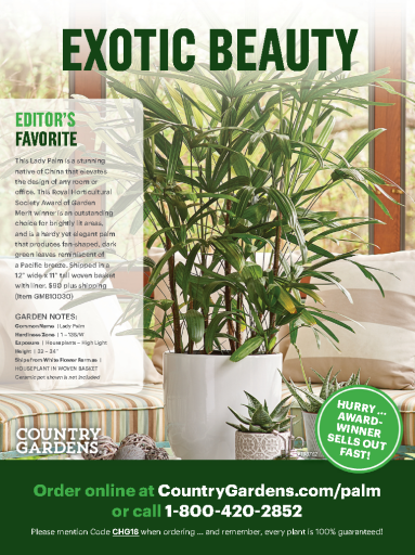 Country Gardens – July 2019