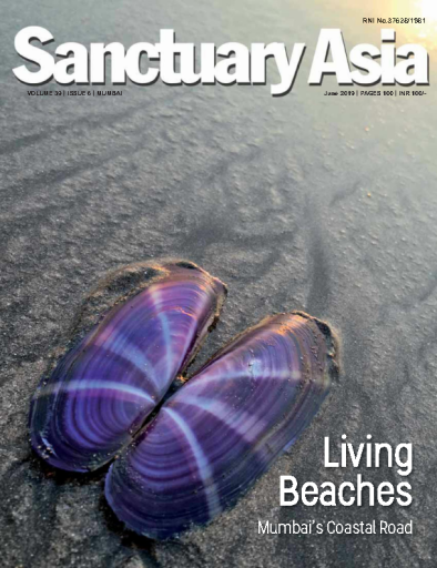 Sanctuary Asia – July 2019
