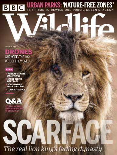BBC Wildlife - UK (2020-08)